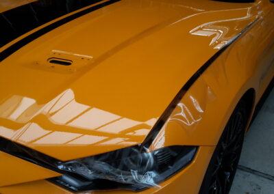 Mustang Motorhaube - Lackschutz
